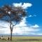 Rekero Maasai Mara, Asilia Lodges and Camps, JorAfrica